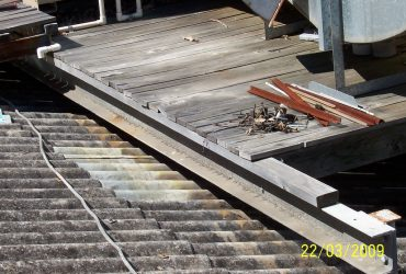ASBESTOS FIBRES IN THE WORKING ENVIRONMENT