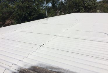 ASBESTOS ENCAPSULATION TOPCOAT